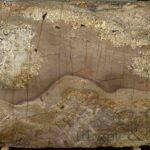Amarone_Bordeaux_Leather_Full