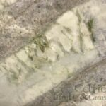 quartzite-corteccia-close